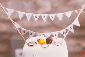 Country wedding theme with a bee and ladybird cake topper.