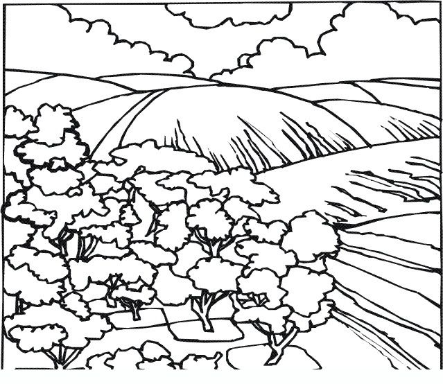 disegno 02 adult and teen coloring pages