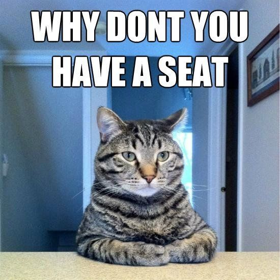 25 funny cat memes.