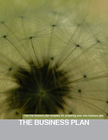 25+ Best Writing A Business Plan Ideas On Pinterest | Business