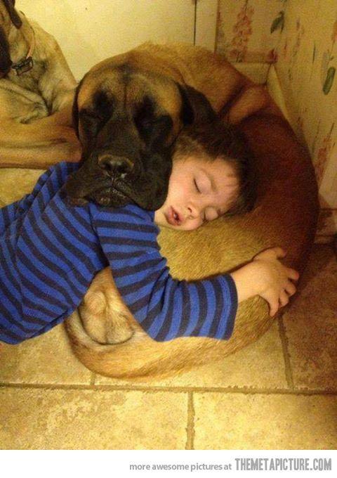 Mutual pillow…