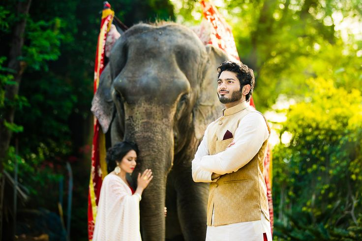 "Breathtaking engagement session in New Delhi featuring real elephants :) For more photos and some ""behind the scenes"" stories head over to the blog - http://www.blog.dmitrimarkine.com/new-delhi-india-engagement-photography/ Photography by Dmitri Markine"