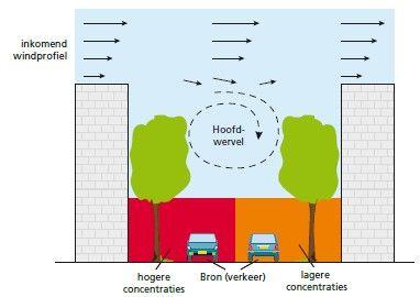 GroeneRuimte : dossier Groen als luchtfilter - Bijdrage van planten aan luchtwaliteit