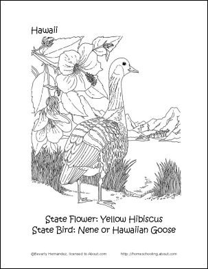 hawaiian goose coloring pages - photo#24