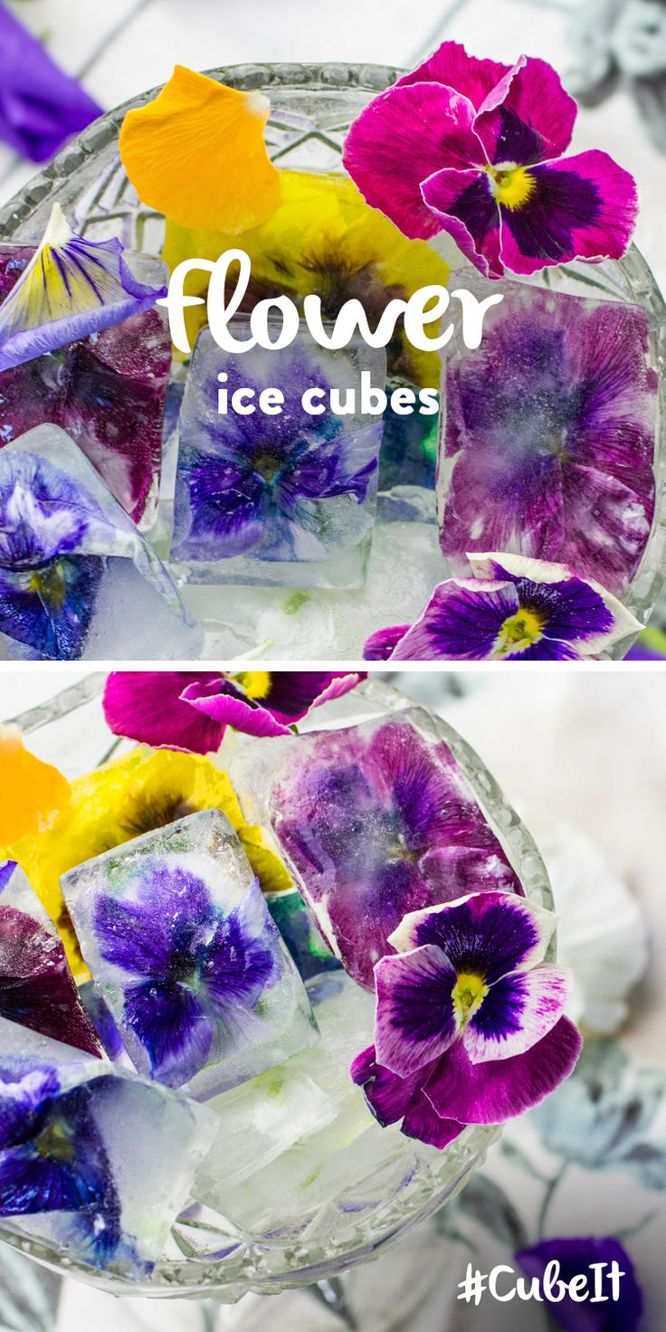 Flower ice cubes. TIP – Add to a cool drink for a fancy garnish! 1) Put edible flowers into your ice cube tray. 2) Pour into your ice cube tray and place in the freezer. ***** Want to win a Samsung Food ShowCase Fridge Freezer? Check out our #CubeIt competition and #PinToWin! go.currys.co.uk/iwJE0n *****