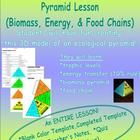 Title: 3D ECOLOGICAL PYRAMID LESSON: BIOMASS, ENERGY, AND FOOD CHAINS Students will have fun creating this 3D ecological pyramid model. The ecolo...