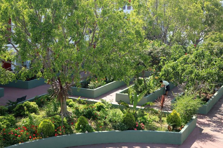 Gorgeous Courtyard Garden Design With Senior Planting In The Courtyard Garden Along Shade Trees Are Also Grass And Flowers As Well As Landscape Architecture Plus House Garden Design, Wonderful Design For Court Yard Gardens: Exterior