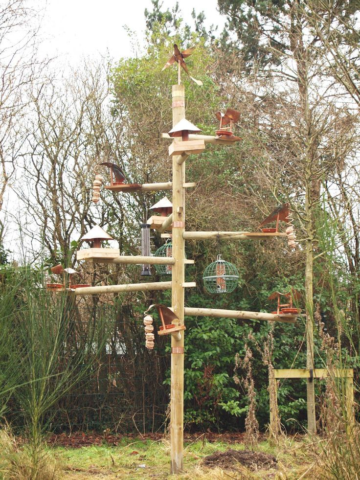 Building+a+Bird+Feeding+Station | Unique Bird Feeding Station Built by Students