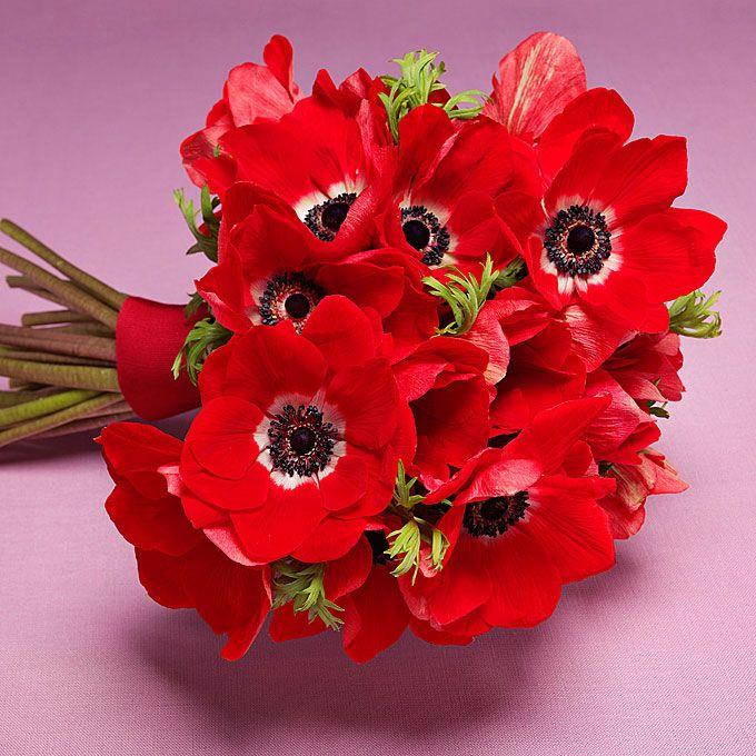 Brides.com: . Wedding Bouquet by Theme: Modern. A bold, red anemone bouquet.  Browse more bouquets for a modern wedding.