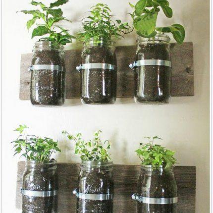 Un mur végétal avec des bocaux en verre