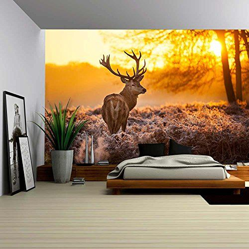 Best Autocollants Muraux Images On Pinterest Wall Stickers