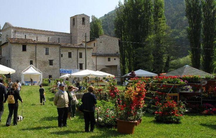 PRIMAVERA IN VALNERINA: dodicesima edizione della mostra-mercato del florovivaismo di qualita' e del giardinaggio