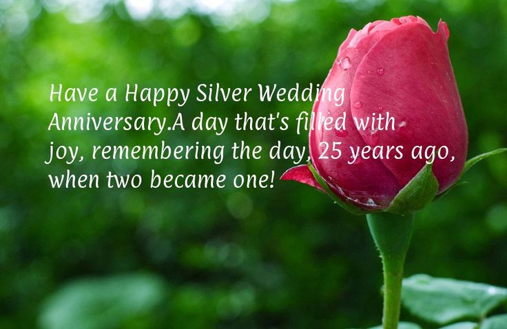Have a Happy Silver Wedding Anniversary. A day that's filled with joy, remembering the day, 25 years ago, when two became one!