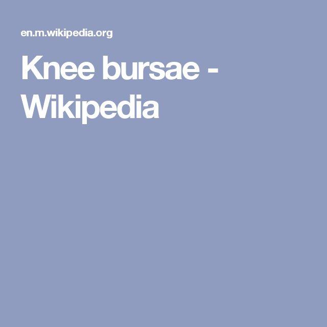 Knee bursae - Wikipedia