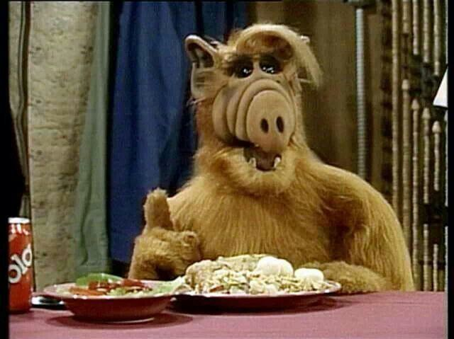 Image result for TV Guide Alf