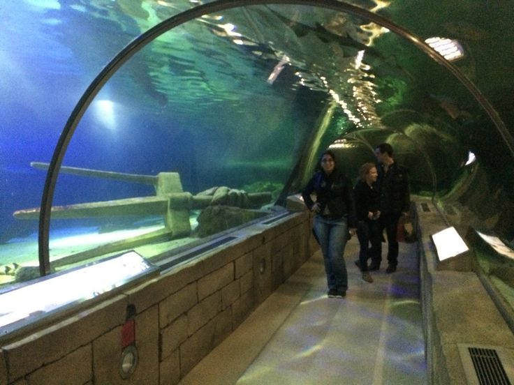 94 Best Images About Mn Family Fun Stuff On Pinterest Plymouth Museums And Parks