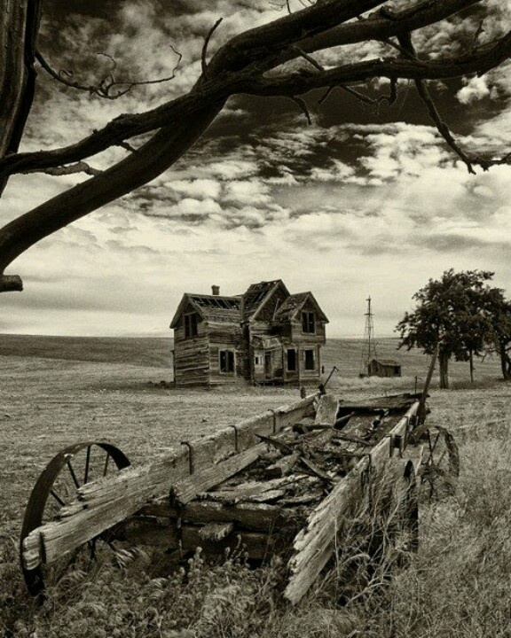Old homestead