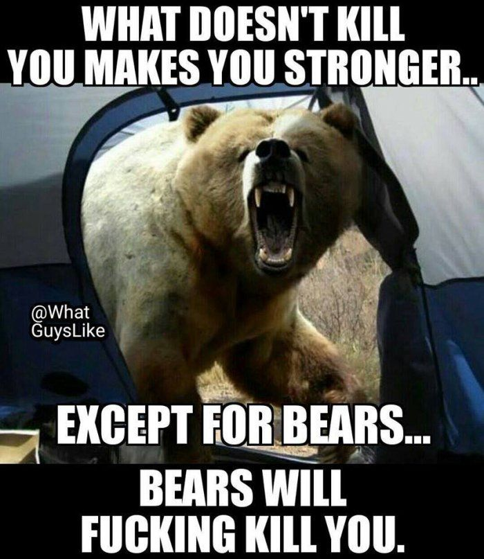 What doesnt kill you makes you stronger – bear meme