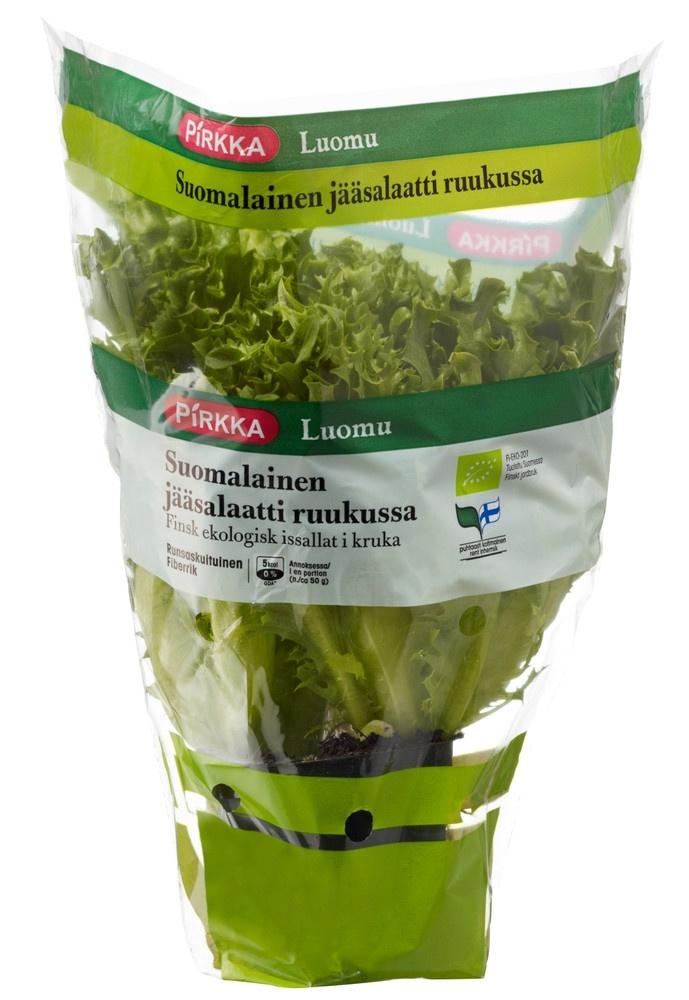 Pirkka Luomu suomalainen jääsalaatti ruukussa 1 lk | Pirkka #luomu #organic