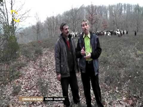 ÇOBANLA BAŞ BAŞA/KEÇİ ÇOBANI-GÖNEN-BALIKESİR