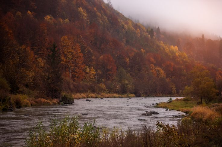 Autumn in Transilvanya... - null