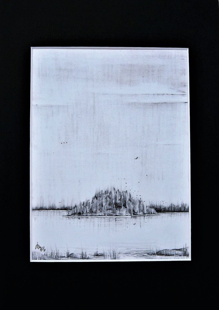 www.johannasinkkonen.com   #artbyjohannasinkkonen