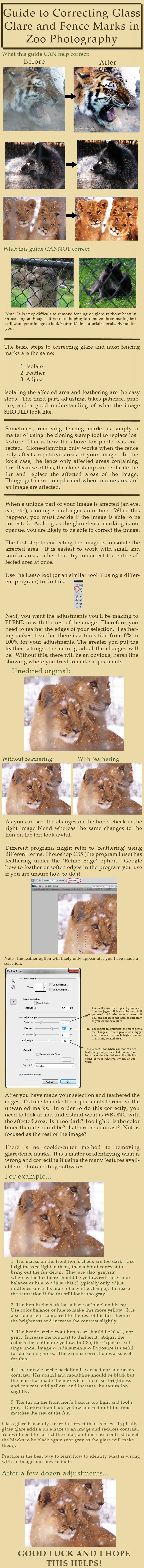 Guide to Removing Glare/Fencing in Zoo Photography by HOTNStock.deviantart.com on @deviantART