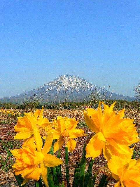 Mt. Yotei, Niseko, Hokkaido, Japan