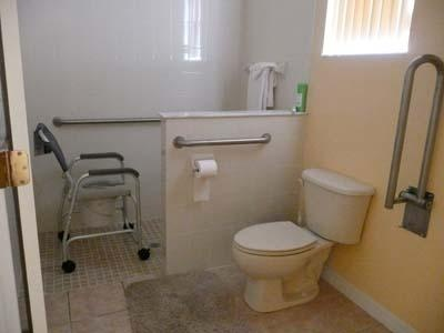 60 Best Images About Handicap Bath On Pinterest Contemporary Bathrooms Bathroom Layout And