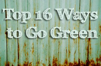 Start here to find out the top ways to go green with these green living tips. www.dogwoodalliance.org