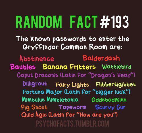 Random fact !!!