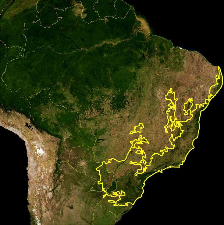 Location of the Atlantic Rainforest