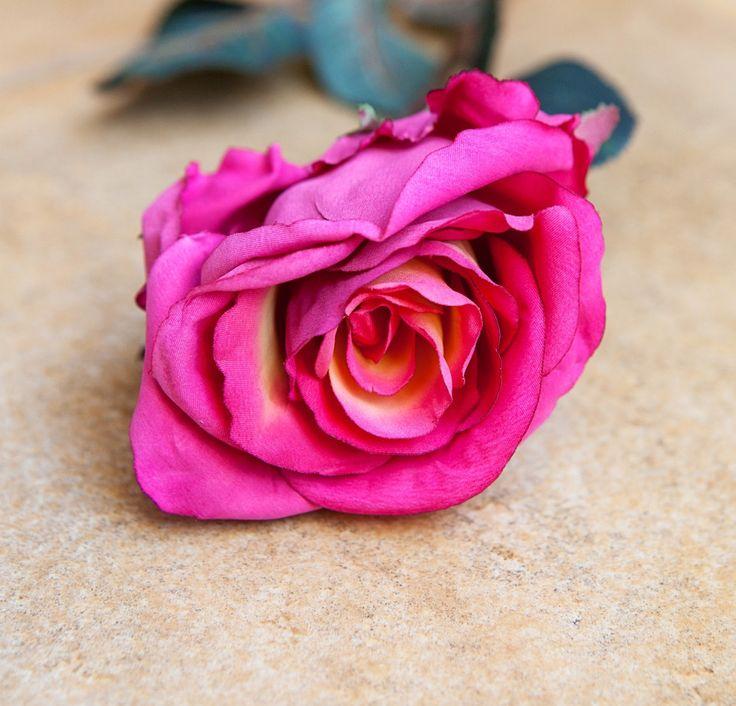 Rose Carolee Beauty 71cm