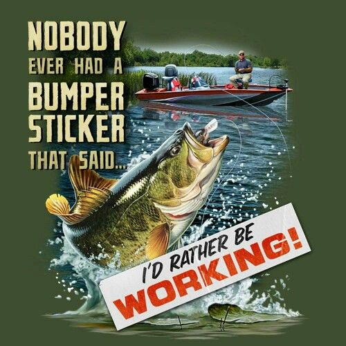 614 best images about bass fishing on pinterest bass for Funny fishing lures