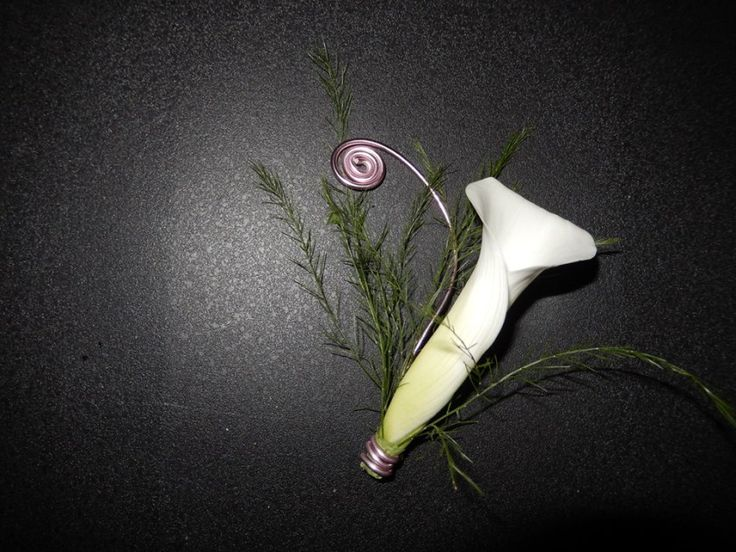 a pretty and elegant boutonniere made of white calla by Dream Bloom