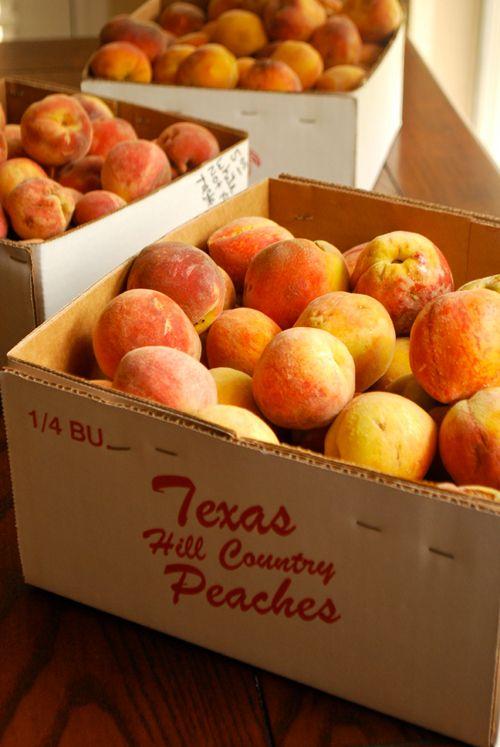 hbs hill country snack foods Dierenbenodigdheden online kopen of prijs vergelijken klik hier voor alle dierenbenodigdheden prijzen en recensies van consumenten.