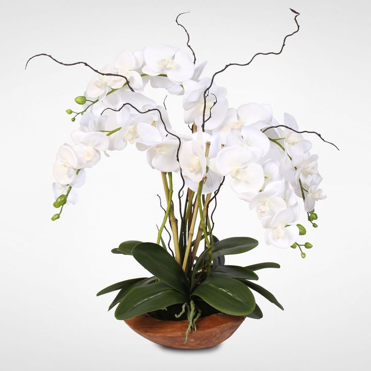 Real Touch Phalaenopsis Silk Orchid Arrangement with Curly Willow in Natural Teak Wood Bowl (Orchid w/Curly Willow in Wood Bowl), Purple