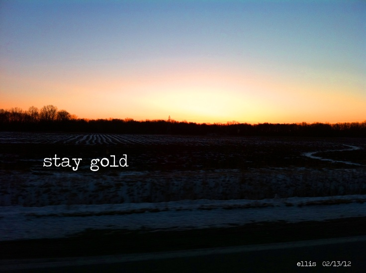 17 best images about stay golden ponyboy on pinterest for Stay gold ponyboy