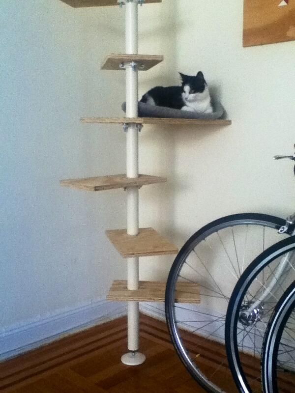 ikea stolmen cat tree diy catstuff pinterest trees