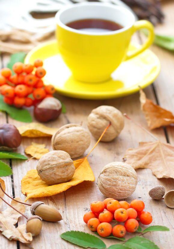 Hatékony vagy csak divatos: a diólevél tea? Folytonosan frissülő blogunkból erre is választ kaphat. ;) #ukkotea #naturopath #herb #walnut #healthcare