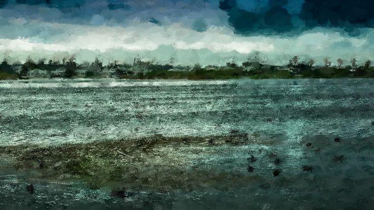 Lakeside ducks