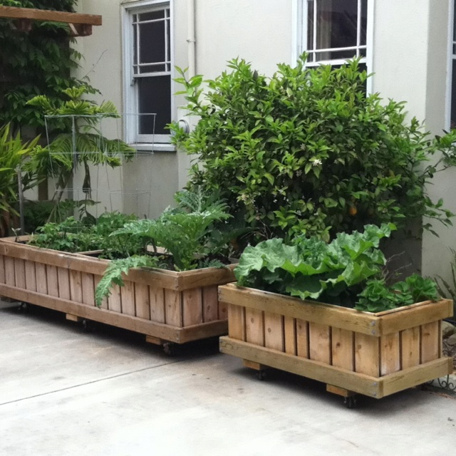 Raised Planters On Legs: How To Build A Raised Planter Box With Legs