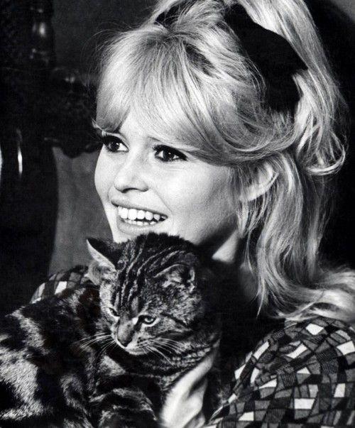 Brigitte Bardot cute hairstyle and cat!