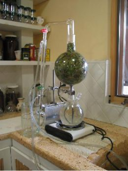 How To Distill Essential Oils