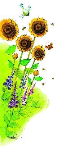 Zonnebloemen in de tuin? Daar trekt u vlinders mee! #ECOstyle #illustratie #tekening #zonnebloem #vlinders
