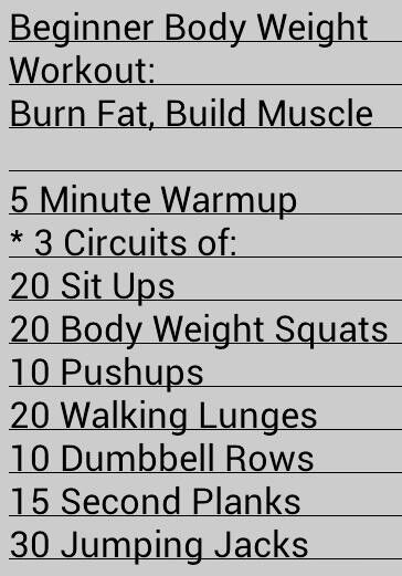 Nerd Fitness Beginner Body Weight Workout:  Burn Fat, Build Muscle