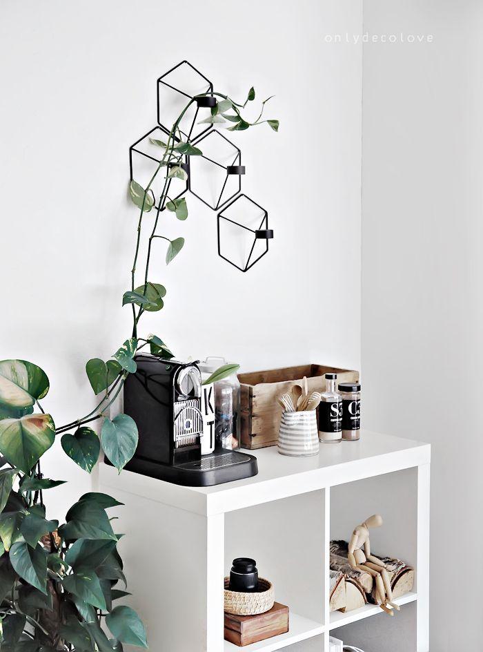 My new Coffee and Chocolate maker - Tassimo Vs Nespresso