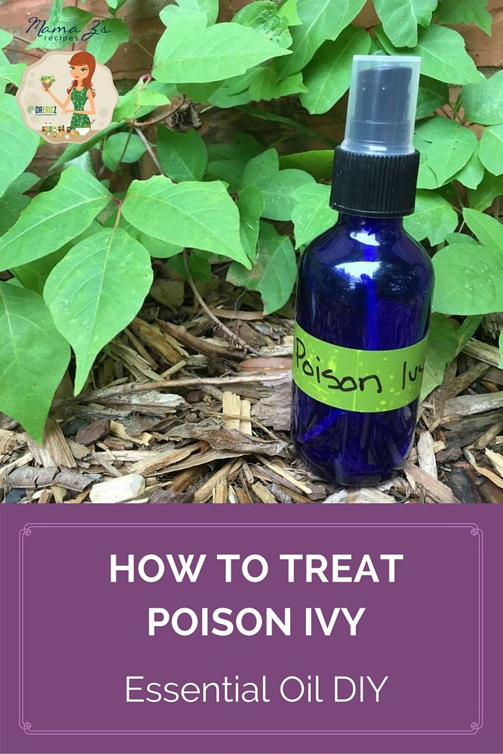 themes in poison oak by bright I had a huge poison ivy patch that i fought for years with all kinds of herbicides   they are easy to see when they are flowering with those bright.