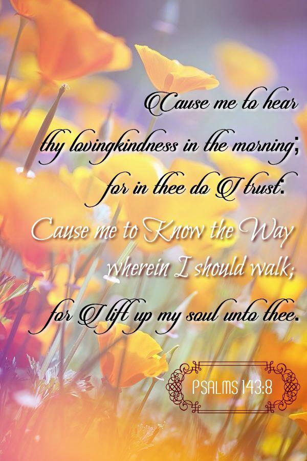 Psalms 143:8 KJV