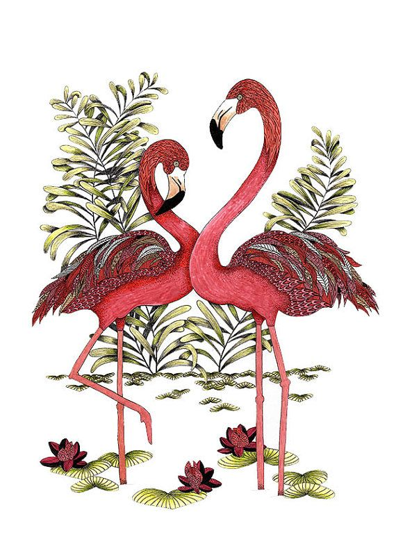 Impression de flamant rose. Art lunatique par TheTangledPeacock
